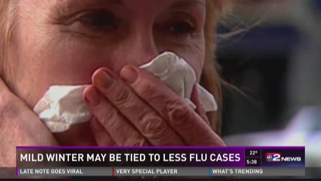 MILD WINTER MAY BE TIED TO LESS FLU CASES